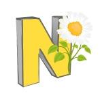 vector-n-alphabet-with-flower_7JOSOz_L