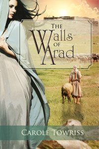 The Walls of Arad cover
