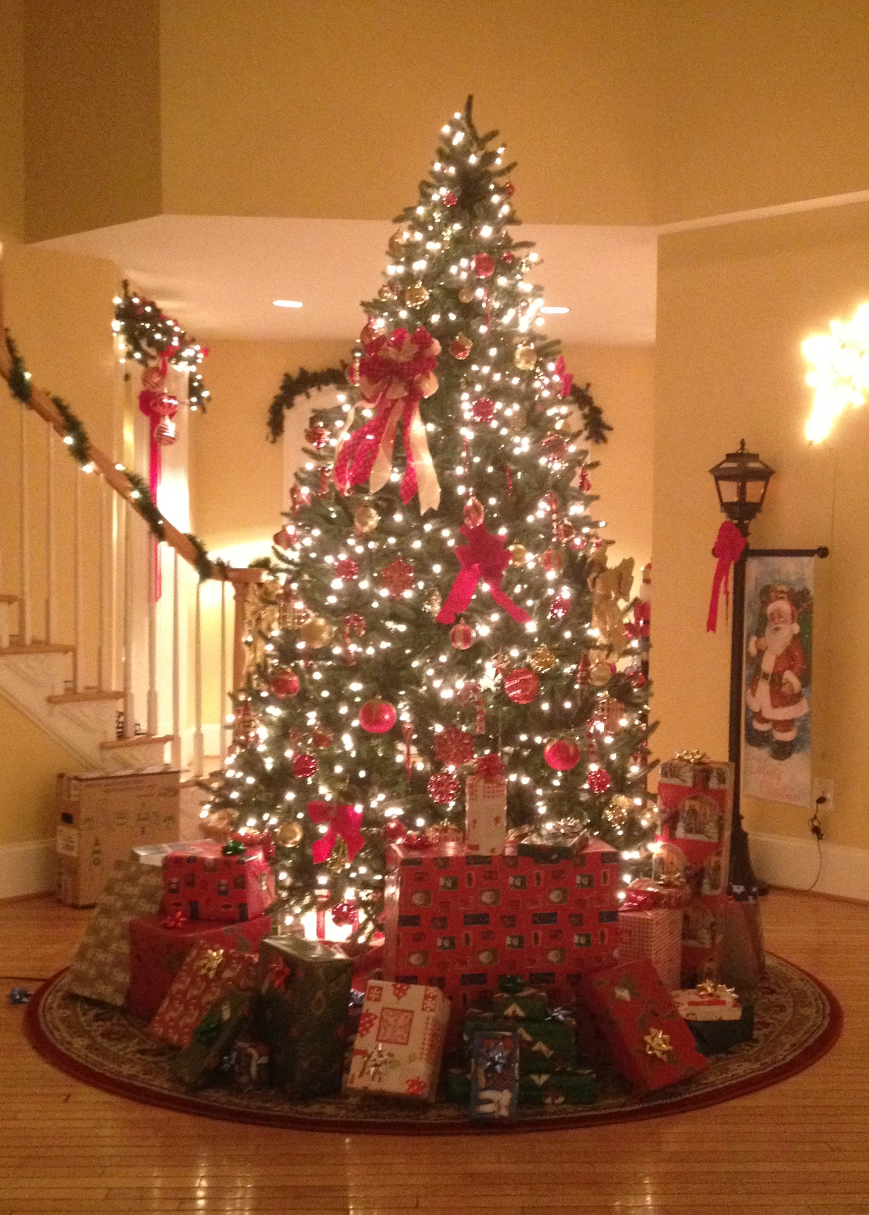 christmas-tree-cropped